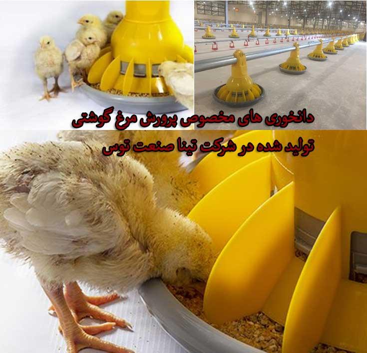 دانخوری مخصوص پرورش مرغ گوشتی - خرید تجهیزات مرغداری