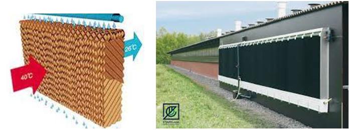 پد سلولوزی (پد کولینگ یا پد خنک کننده) - خرید تجهیزات مرغداری